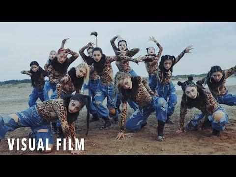ALNW Project Vol.3 l JungleBook l Luna Hyun Choreography