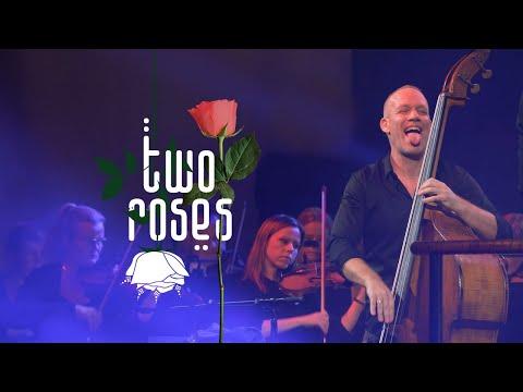 Avishai Cohen - Two Roses (Album Trailer)