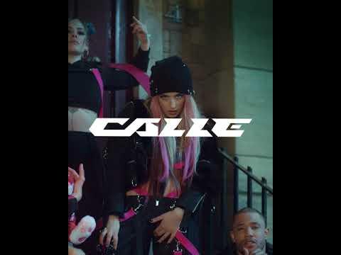 CALLE. Avance 1.