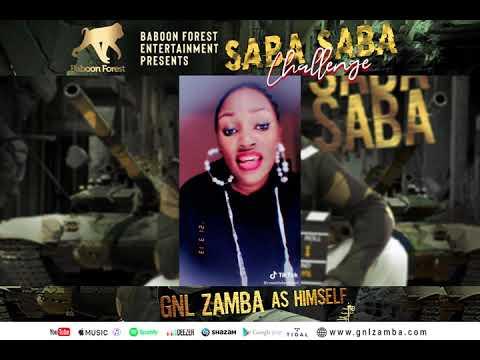 GNL Zamba TV - SABASABA CHALLENGE FINALIST