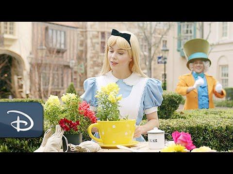 An Alice In Wonderland Zany Gardening Tutorial   Walt Disney World