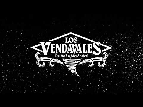 Los Vendavales De Adán Meléndez - Mi Chiquita (Lyric Video)