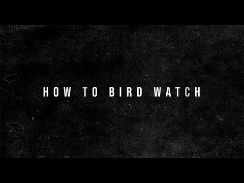 The Offspring - How-To Bird Watch