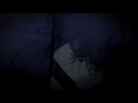 JustinSullivan - Clean Horizon