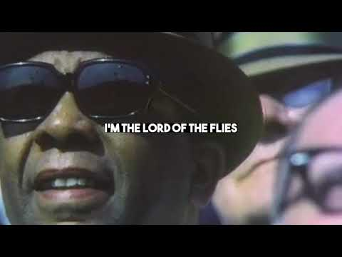 Bob Schneider - Lord Of the Flies (Official Lyric Video)