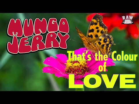 Mungo Jerry - That's The Colour Of Love