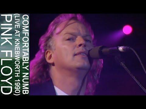 Pink Floyd - Comfortably Numb (Live at Knebworth 1990)