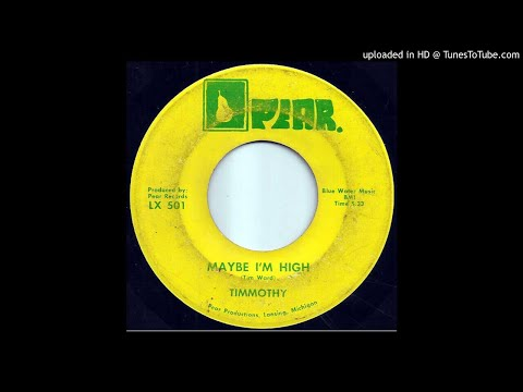 "Timmothy ""Maybe I'm High"" (1972 Pear) Michigan private press psychedelic loner folk [Tim Ward]"