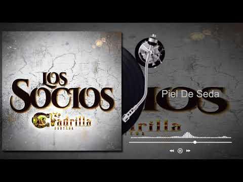 La Cuadrilla Norteña - Piel De Seda - Los Socios (Audio)