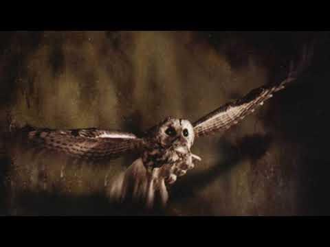 "Rotting Christ-Moonlight-(Bonus song from the album ""Sleep of the Angels"" 1999)"