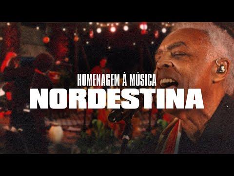 Homenagem à Música Nordestina | SÃO JOÃO EM ARARAS - AO VIVO