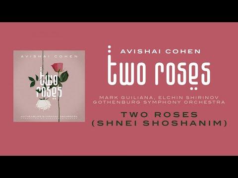 Avishai Cohen - Two Roses (w/ Mark Guiliana, Elchin Shirinov & Gothenburg Symphony Orchestra)