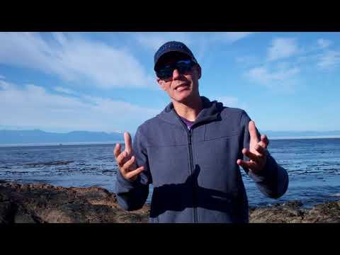 Grateful Dead - Seaside Chat: David Lemieux On St. Louis