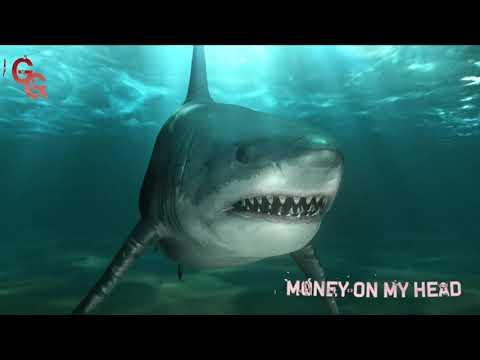 Shy Glizzy & Glizzy Gang - Money On My Head (feat. 3 Glizzy) [Official Audio]