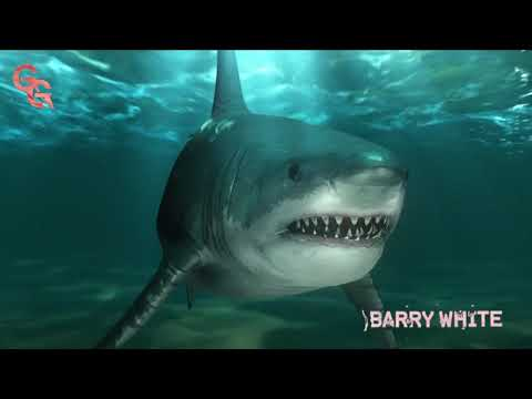 Shy Glizzy & Glizzy Gang - Barry White (feat. Goo Glizzy) [Official Audio]