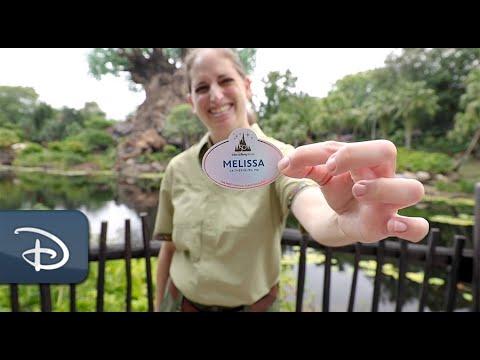 New 50th Anniversary EARidescent Cast Member Nametags   Walt Disney World Resort