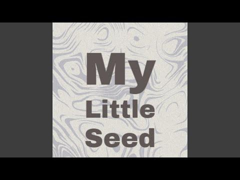 My Little Seed