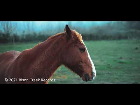 James Robert Webb - A Horse Named Freedom (lyric video)
