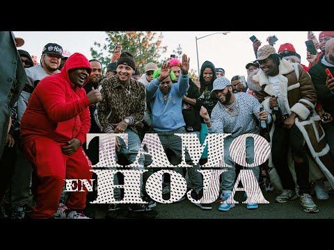 "El Alfa ""El Jefe"" x Dowba Montana x MarkB - Tamo En Hoja (Video Oficial)"