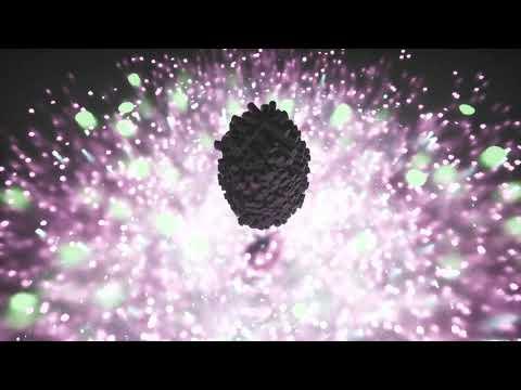 Yann Tiersen - Kerdrall (Official Visualizer)
